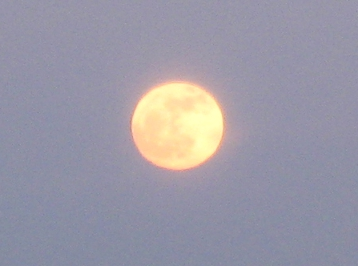 an almost full moon rising