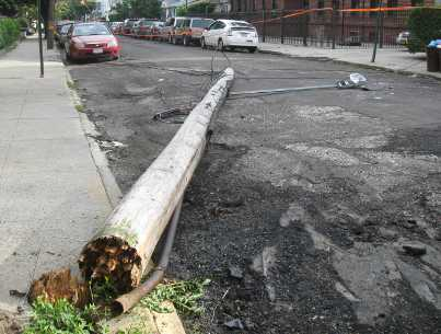 utility pole downed by Hurricane Irene in Brooklyn