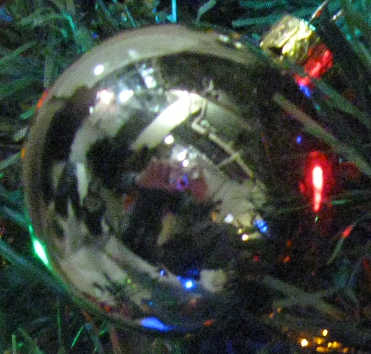 sidneys_tree_20140215_detail (22K)